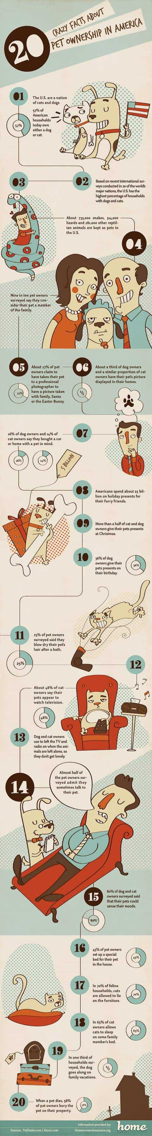 pet-owner-facts