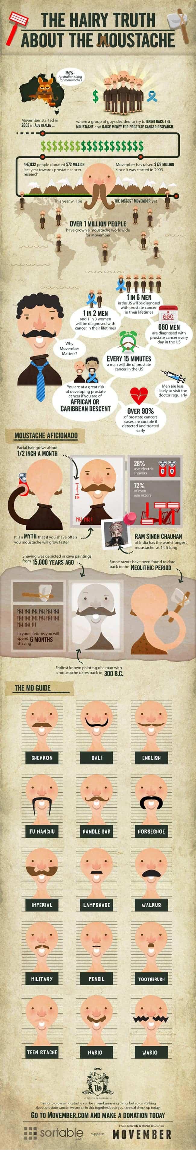 Moustache Infographic