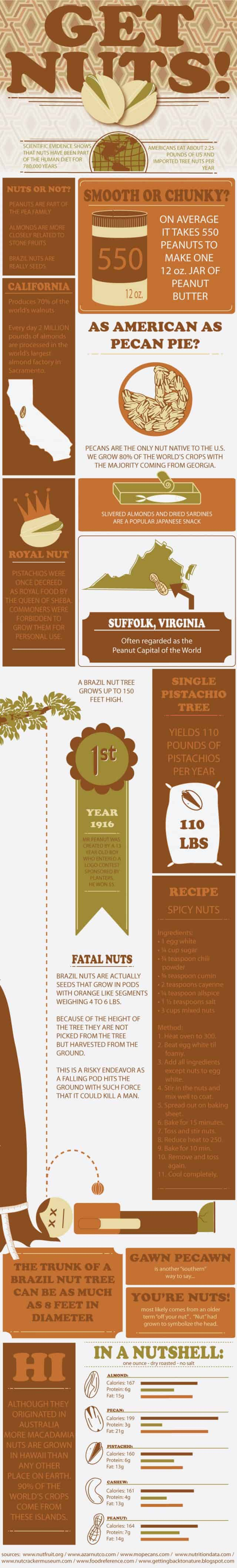 Get Nuts! [infographic]