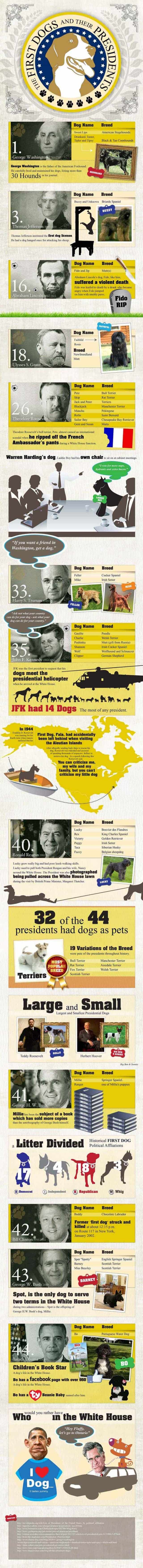 First man's best friend: The dogs of the presidents [Infographic]