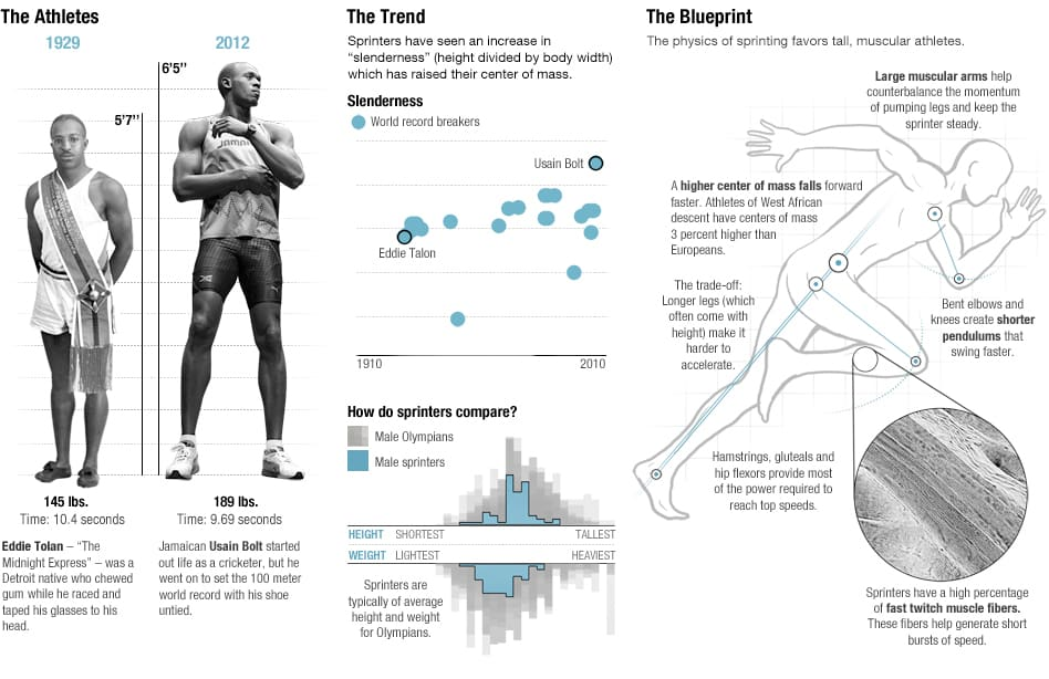 The physics of olympic bodies infographic
