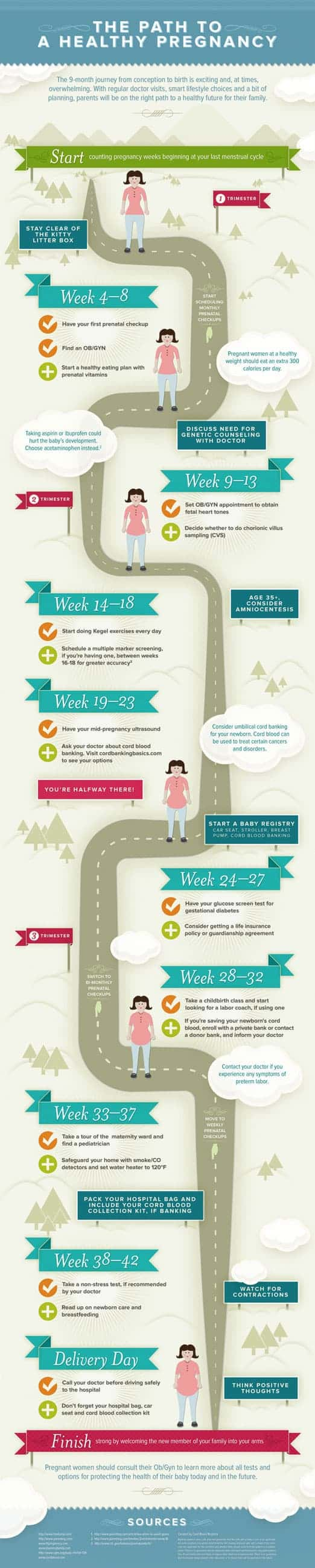 The Path To A Healthy Pregnancy [Infographic]