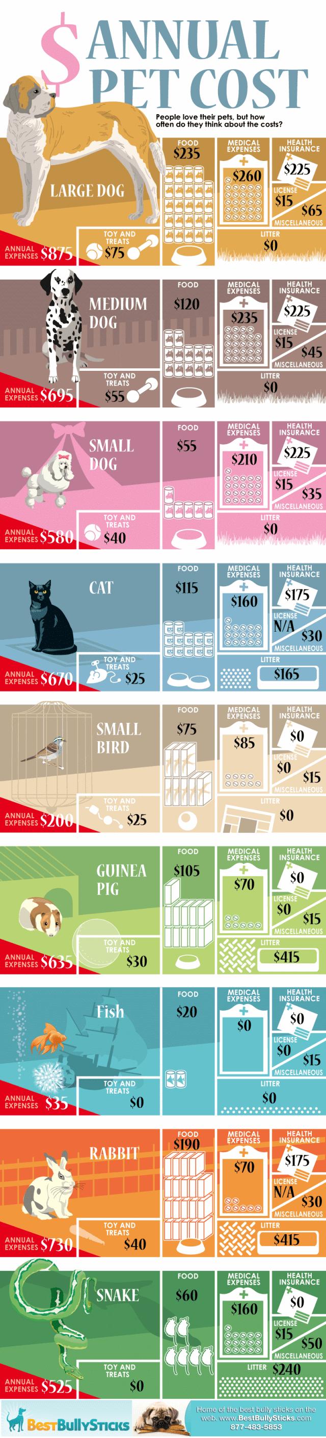 Cat Costs Vs Dog Costs