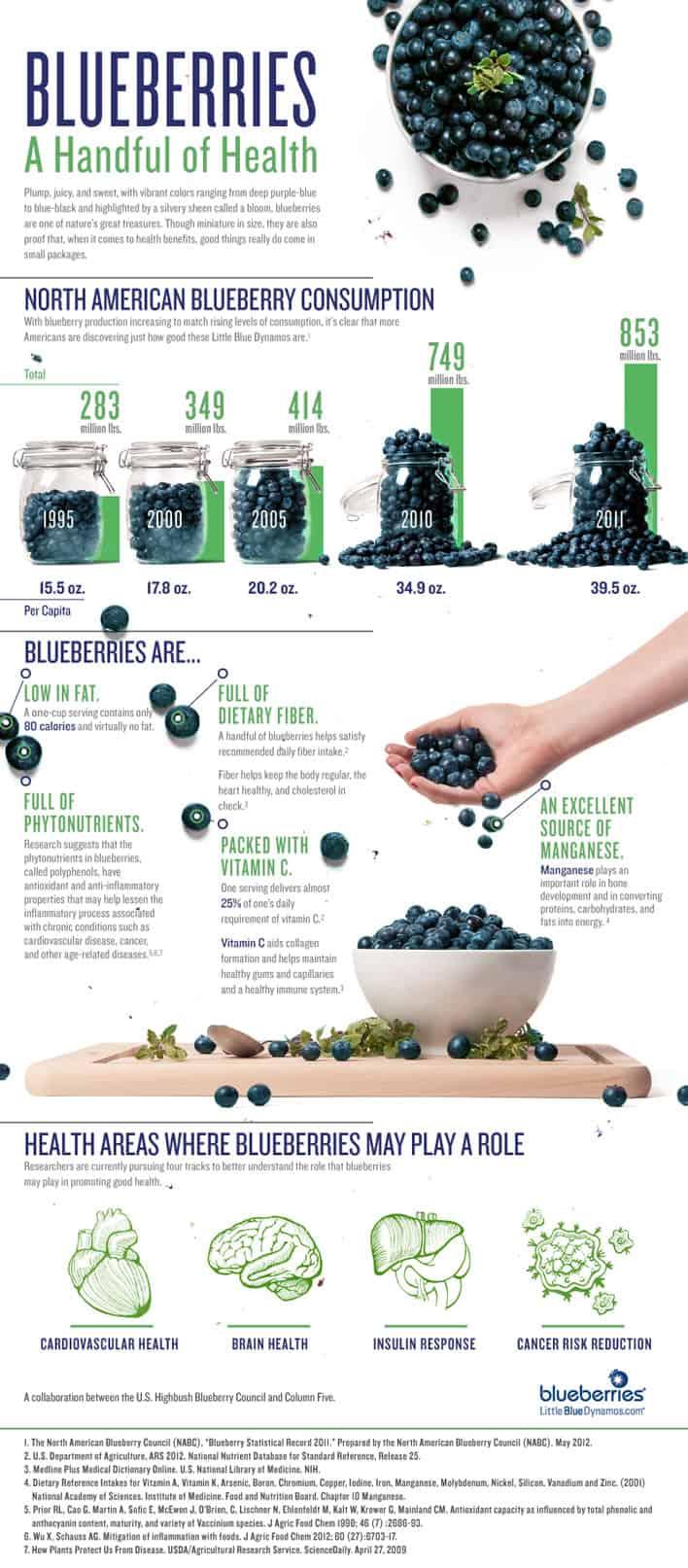 Healthy Food Chart Pdf
