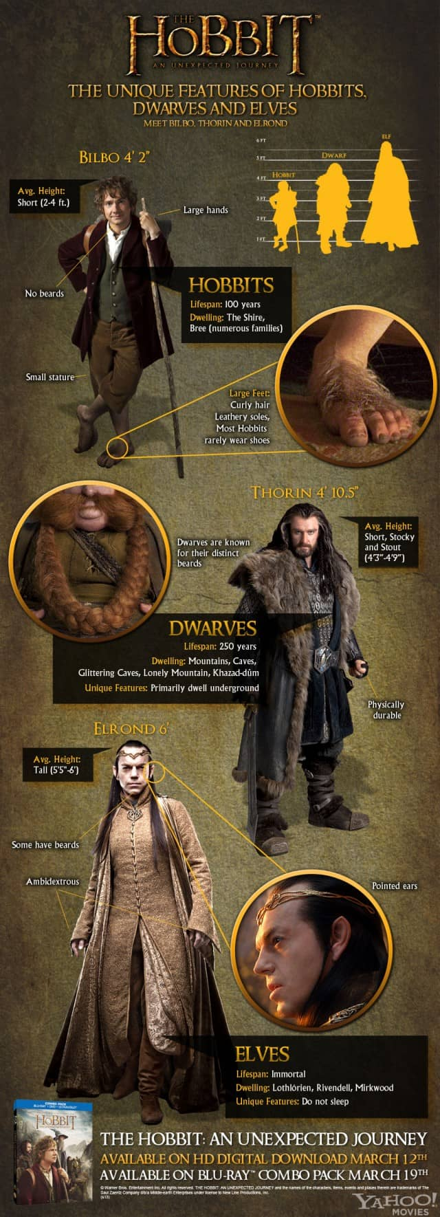 The Inhabitants of Middle Earth [Infographic]