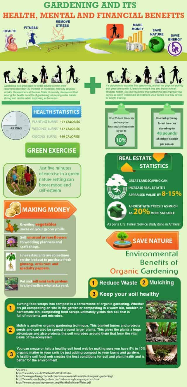 Gardening and its Benefits - Infographic