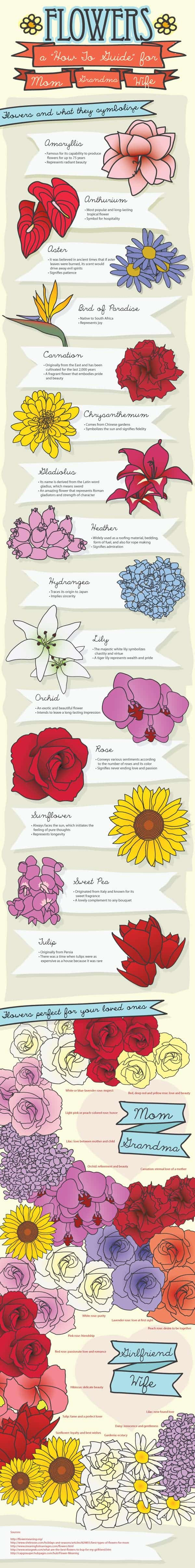 http://dailyinfographic.com/wp-content/uploads/2013/09/choosing-the-right-flower-for-the-right-occasion_502917e0600db.jpg