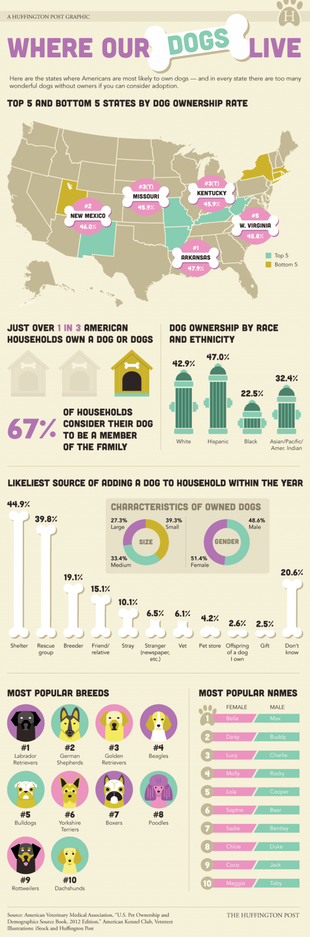 Which States Love Dogs the Most? [Infographic]