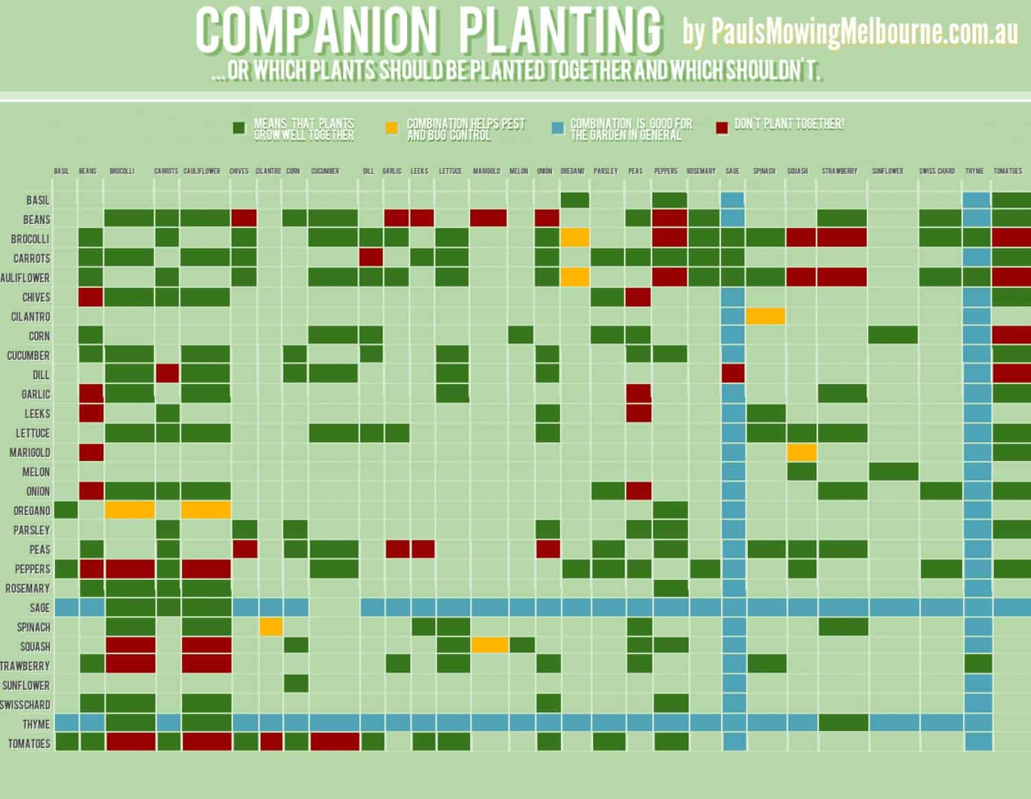 Companion planting infographic daily infographic - Companion planting ...