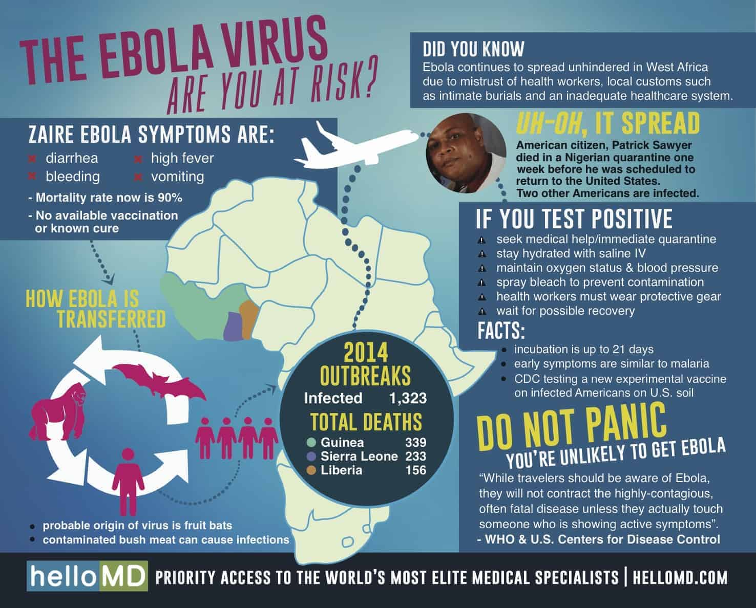 Ebola Virus - Are You at Risk?