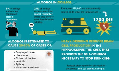 Truth About Alcoholism Infographic