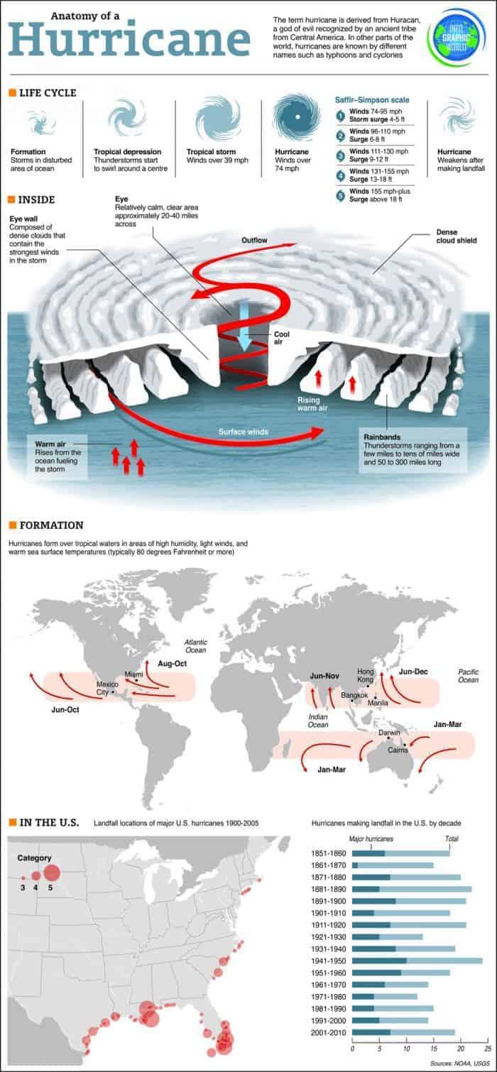 Anatomy of a Hurricane Infographic