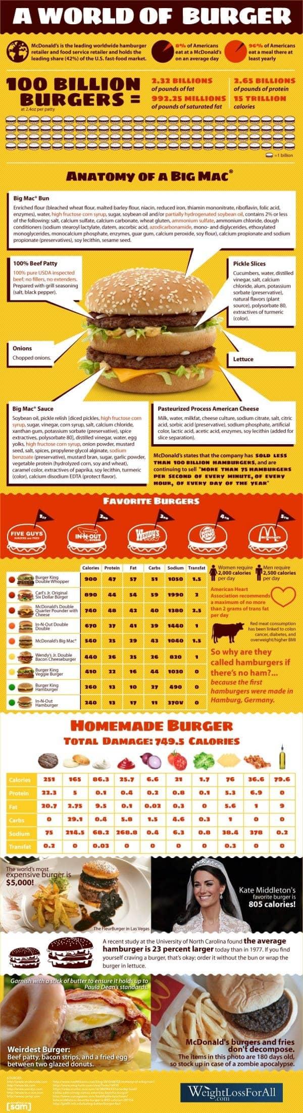 Hamburgers Infographic