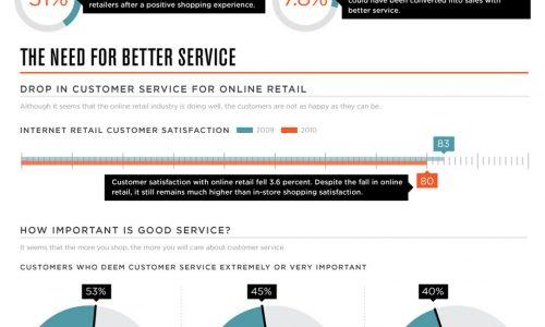 Online Customer Infographic