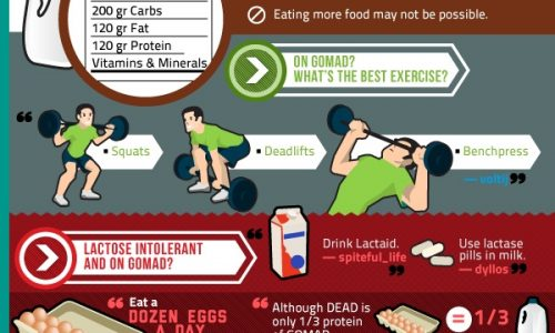 Reddit's Guide to Fitness Infographic