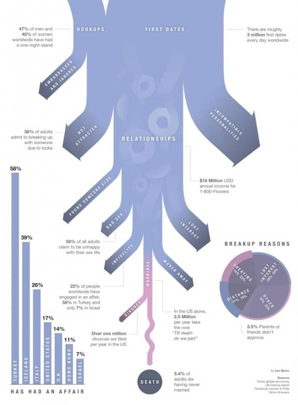 Breakup Reasons Infographic