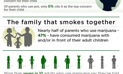 Infographic about American families and their thoughts on weed