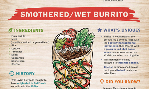 Infographic showing amazing types of burritos with all recipes and some interesting facts about them